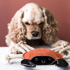Green & Wilds Carlos the Crab - Dog Toy - Life Before Plastik