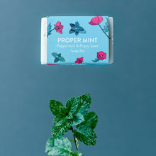 Load image into Gallery viewer, Life Before Plastik 'Proper Mint' Peppermint Soap Bar
