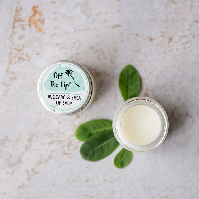 Avocado & Shea Lip Balm - Life Before Plastik