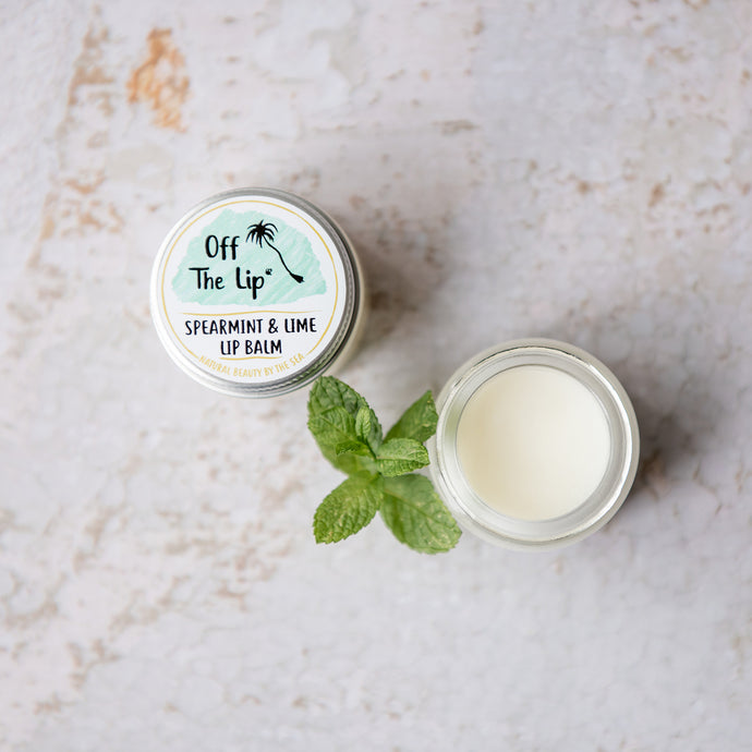 Spearmint & Lime Lip Balm - Life Before Plastik