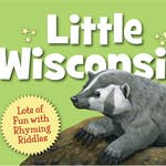 Little Wisconsin board book