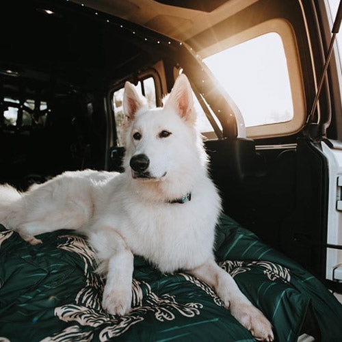 QUILTED PREMIUM RECYCLED PET BLANKET AMONG WOLVES