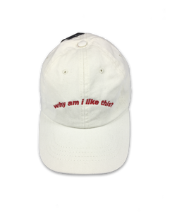 why am i like this? (ash cap) | Orla Gartland Official Store
