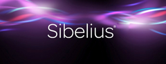 Where can you find your Sibelius System ID?
