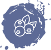 files/blueberries-icon-1.png