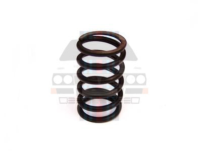 Large Outer Valve Spring integrale