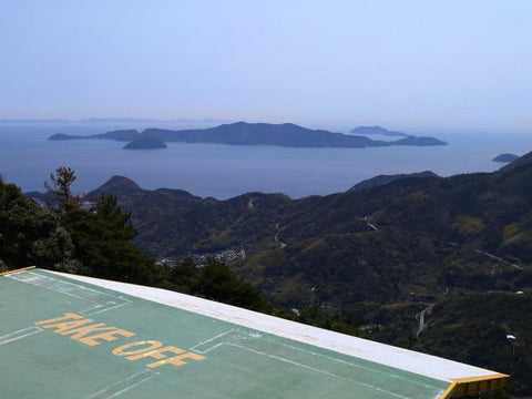 VIEW from top of 600m ridge line suo oshima japan hike