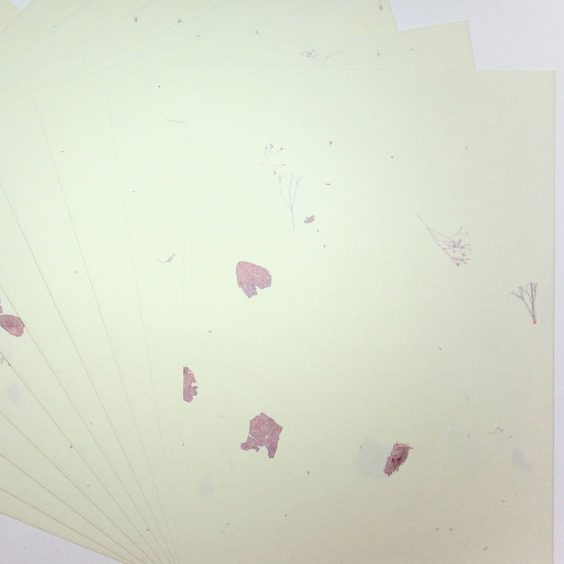 A4 Pampas Dried Flower Paper. 10 Sheets - paper Japanese Stationery