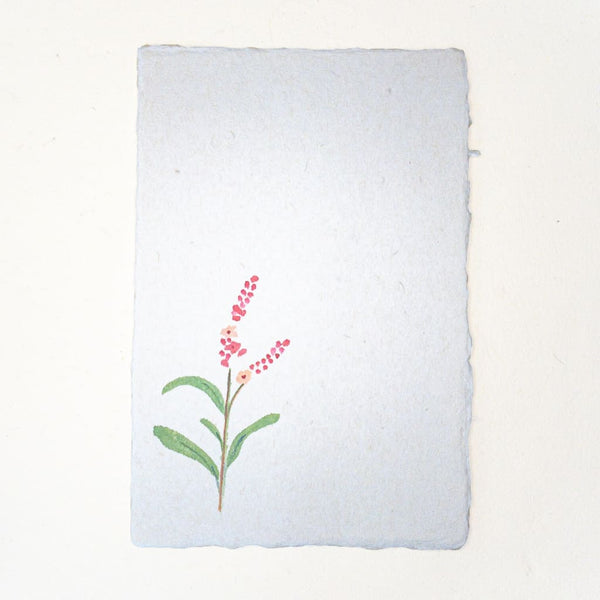 Hand painted Water-Pepper Flower postcard 20% OFF - Cards Japanese Stationery
