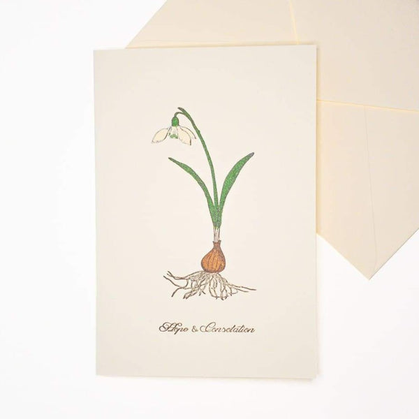 Hope & Consolation Letterpress Greeting Card - Cards Japanese Stationery