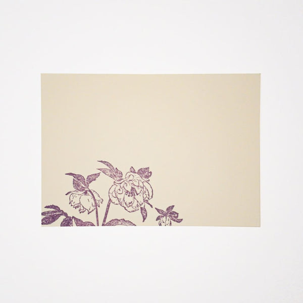 Letterpress Hellebore Postcard & Envelope - Cards Japanese Stationery