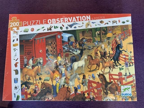 Observation Puzzle- Horseriding