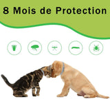 Collier Anti-Parasitaires Pour Chat et Chien - Forily Shop Forily