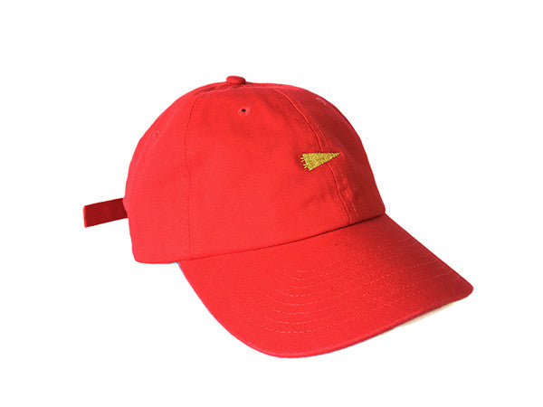 niners fans pennant dad hat