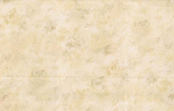 WALLPAPER DOUBLE ROLL SA23416