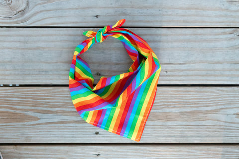 Love Is Love Bandana