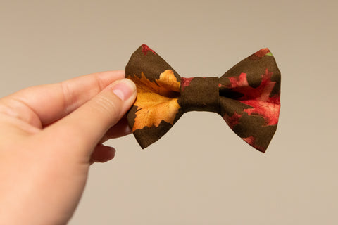 Autumn Oaks Bow Tie