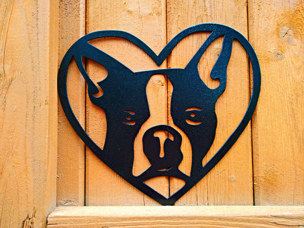 Boston Terrier in Heart
