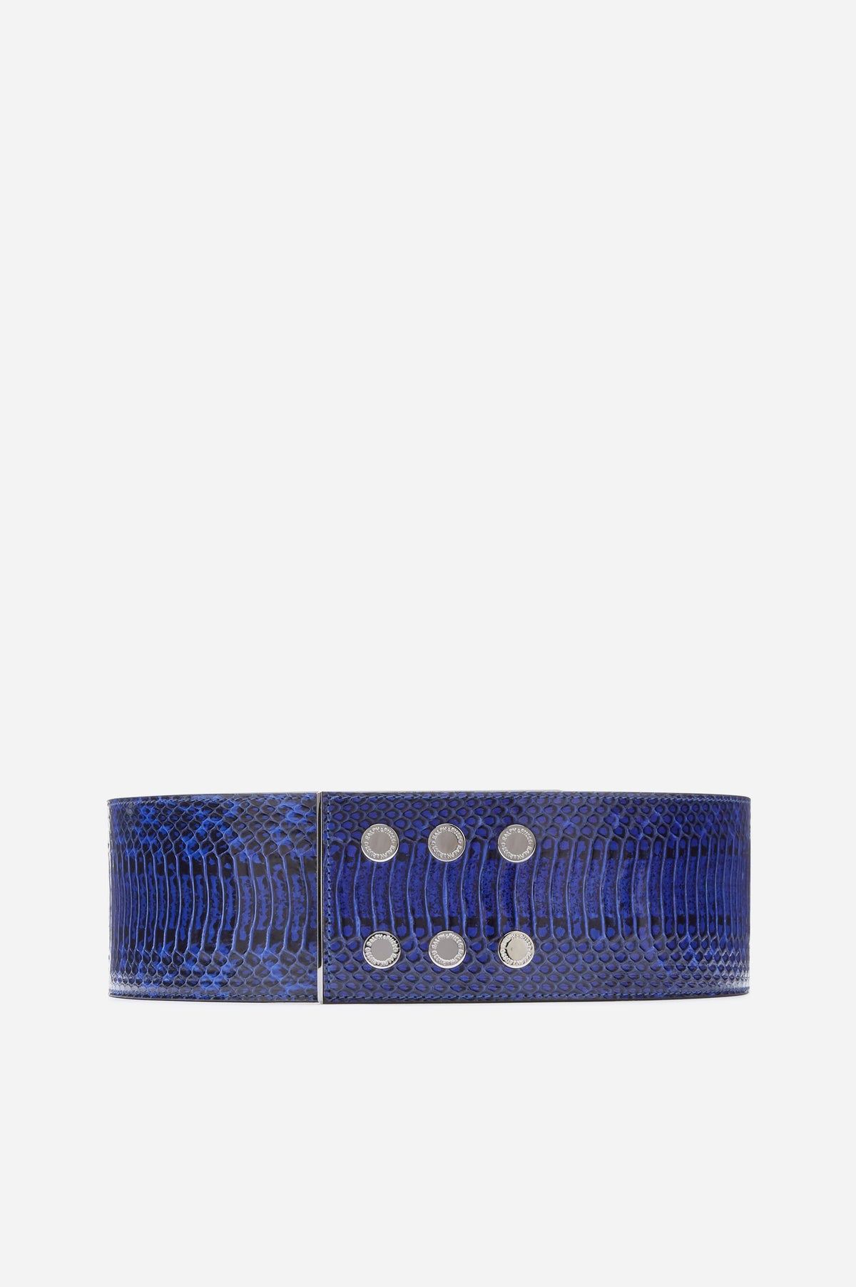 Blue and Black elaphe with gunmetal hardware