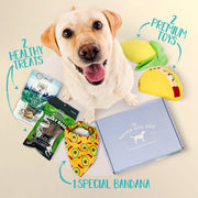 The Dapper Dog Gift Subscription Box
