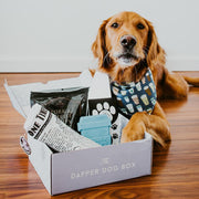 Breakfast in Bed Box - The Dapper Dog Box