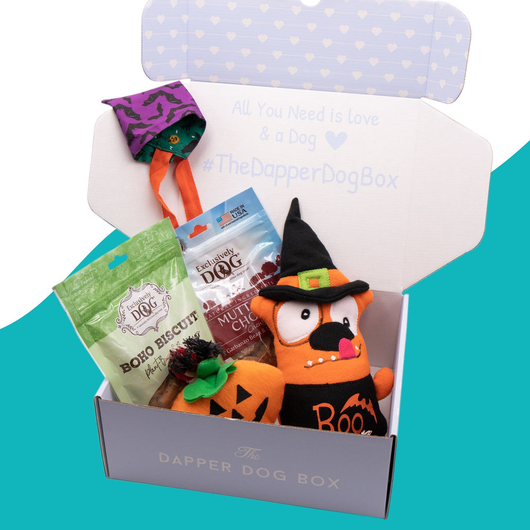 Halloween Themed Box
