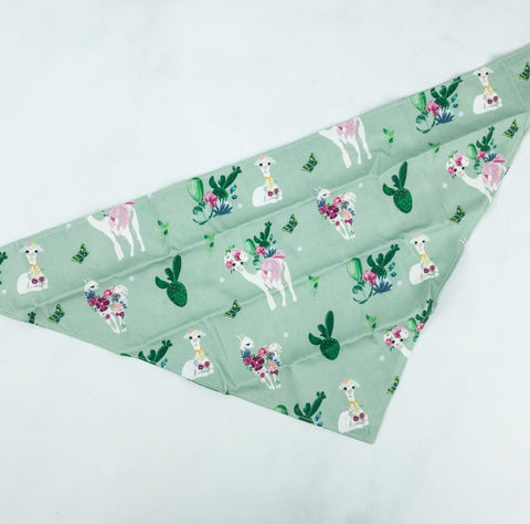 Pupchella Flower Crown Llama Bandana - The Dapper Dog Box