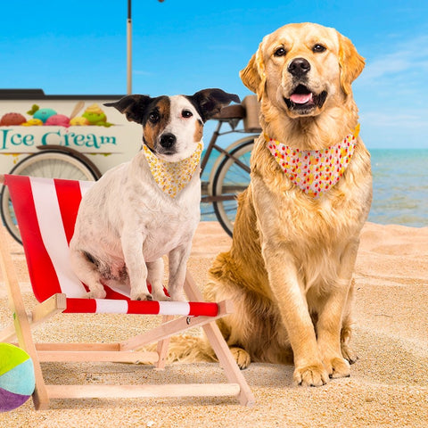 Summer Theme Bandana - Beach and Ice Cream - The Dapper Dog Box Exclusive - The Dapper Dog Box