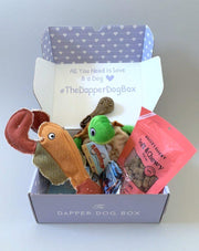 Under the Sea Box - The Dapper Dog Box