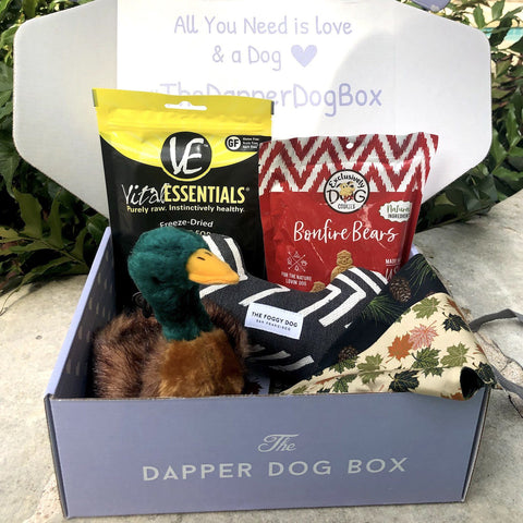 Woodland Forest Box - The Dapper Dog Box