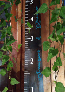 Hand Painted 6 ft. Personalized Family Growth Chart