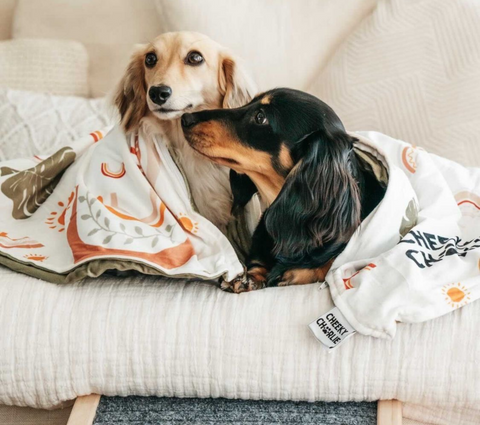 Cheeky Charlie Boho Vibes Weighted Blanket