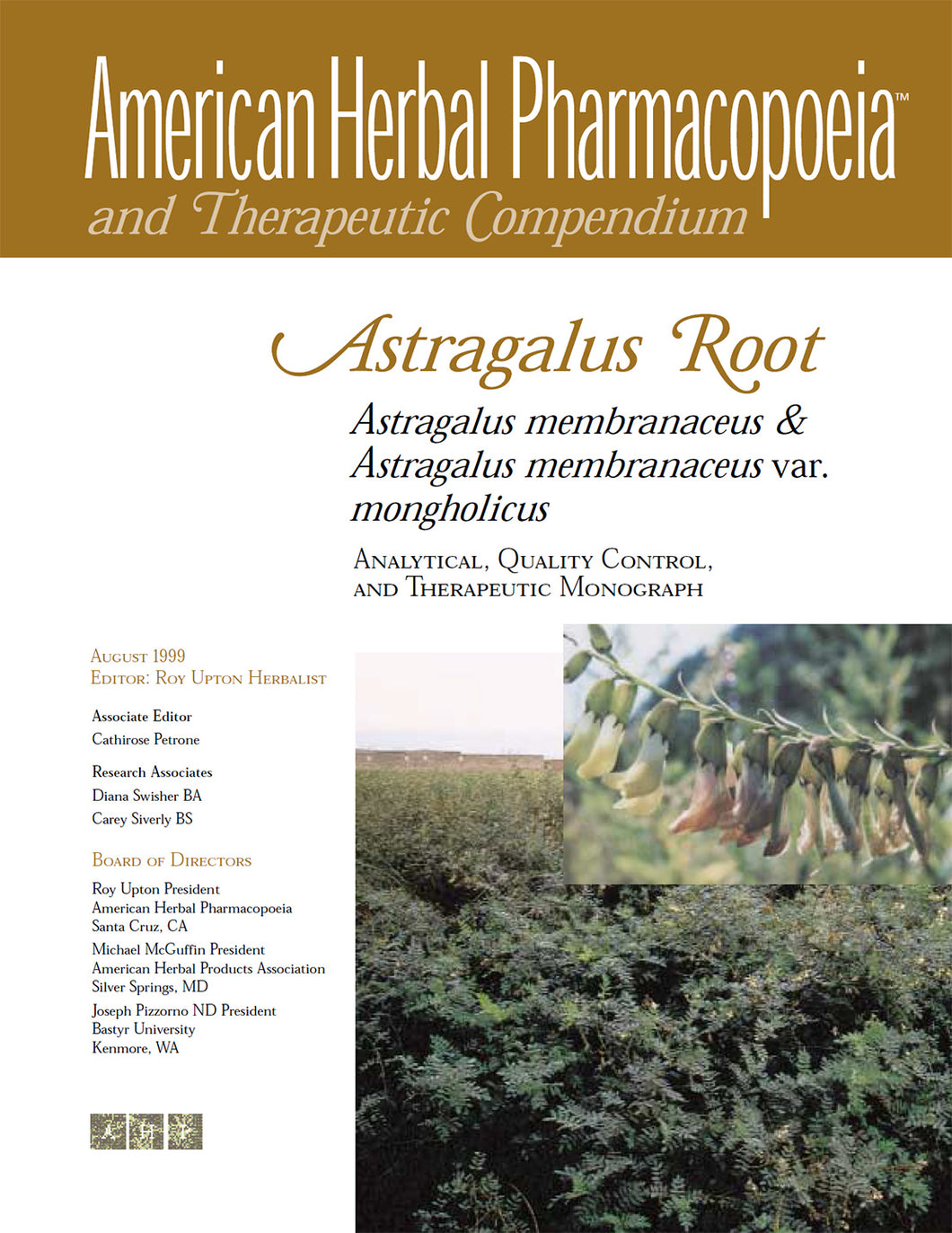 Astragalus Root