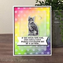 Load image into Gallery viewer, Gina Marie Clear stamp set - Kitty cat