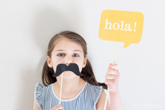 Fiesta Party Kit- Banner, Food Labels, Photo Props, Party Signs For Cinco de Mayo or Parties
