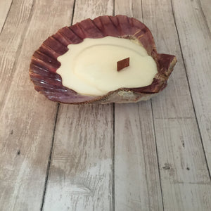 The Shell Candle
