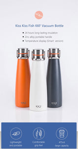 Stainless Steel Insulated Travel Thermos