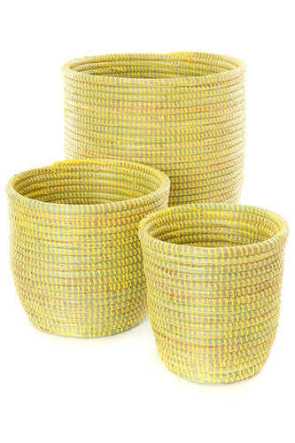 Set of Three Solid Yellow Flora Planters