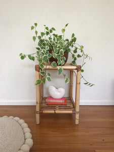 Perfect cane side table / plant stand