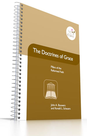 Grade 11 - The Doctrines of Grace Pillars of the Reformed Faith