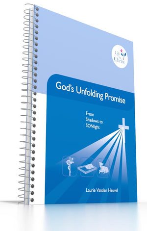 Grade 6 - God's Unfolding Promise From Shadows to SONlight
