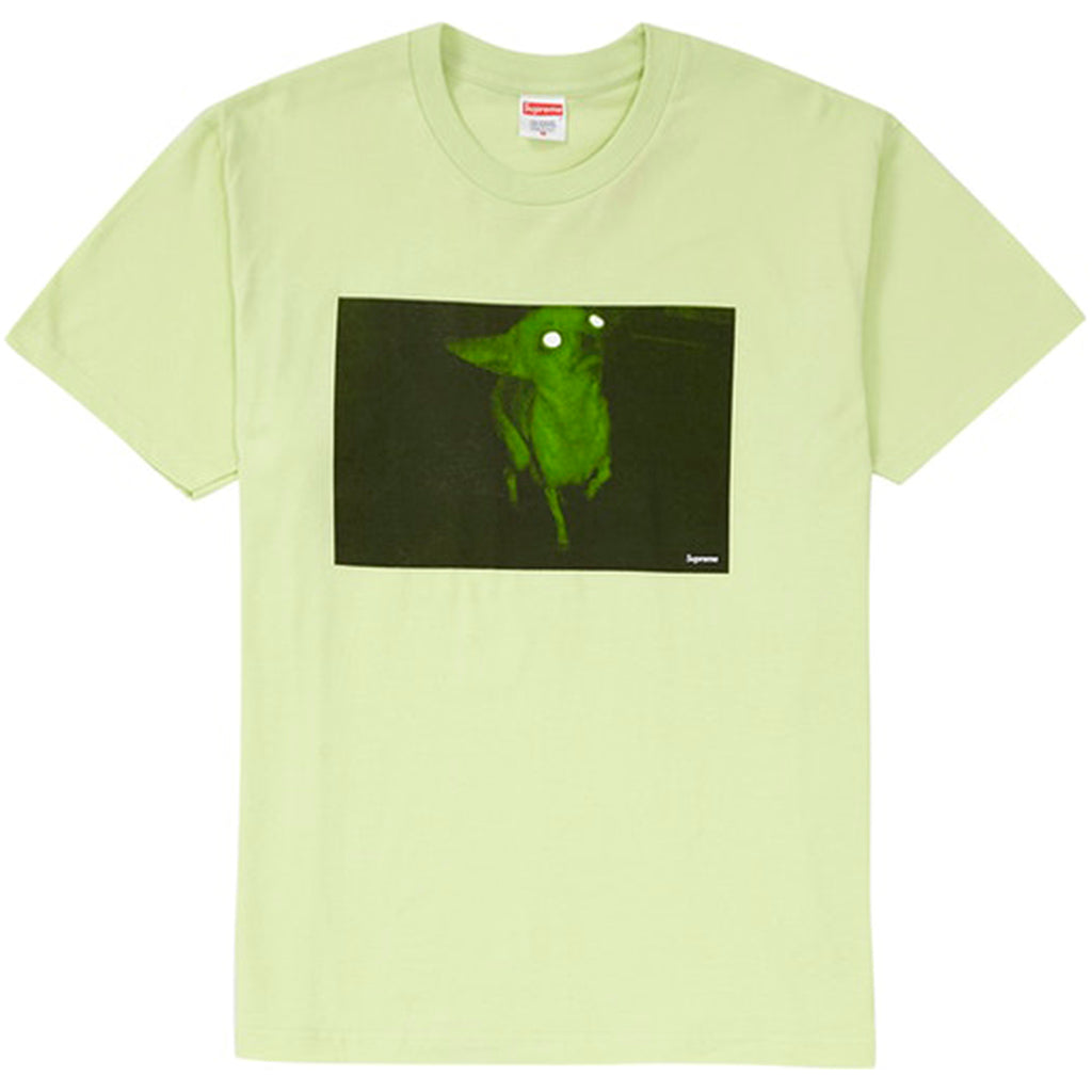 Supreme Chris Cunningham Chihuahua Tee Pale Mint