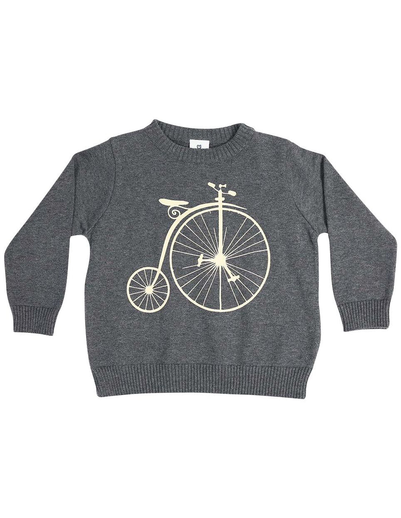 C13031C  Vamos Vintage Boys Knit Sweater with Print