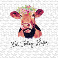 Not Today Heifer Farm Life