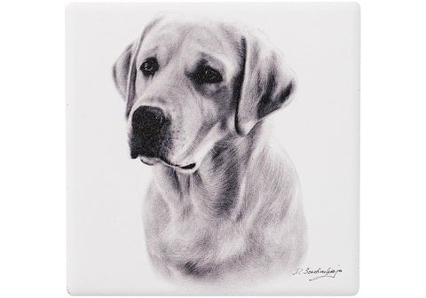 Delightful Dogs Labrador Ceramic Coaster