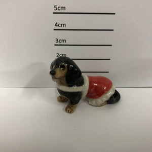 Dachshund With Jacket