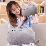 Peluche Kawaii Pusheen | Village Kawaii