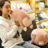 Peluche Kawaii<br> Coussin Cochon