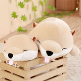 Peluche Kawaii<br> Loutre Moelleuse