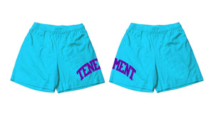 Mesh Shorts Aqua/Purple